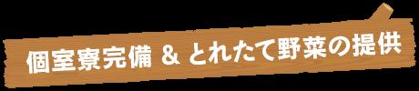 農業で独立を目指す菊地農園塾|とれたて野菜の提供