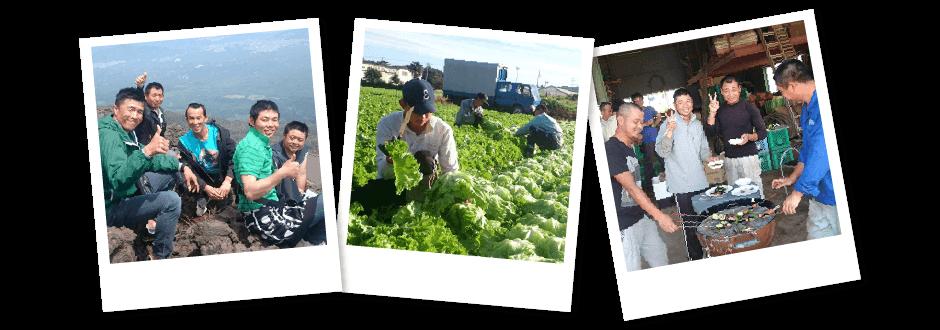 農業で独立を目指す菊地農園塾|研修生
